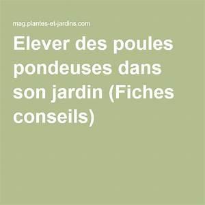 Comment Elever Des Poules : elever des poules pondeuses dans son jardin fiches ~ Melissatoandfro.com Idées de Décoration