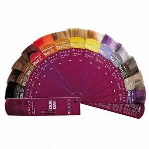 Voil Color Kult Color Folder Intercosmo