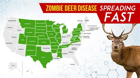zombie disease humans contract future cdc fatal likely says near