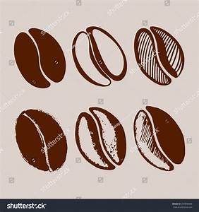 Hand Drawn Coffee Beans Stock Vector 294898988 - Shutterstock