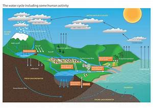 File Diagram Of The Water Cycle Including Some Human