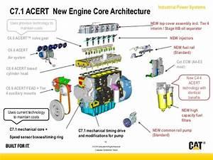 Cat C7 Acert Engine Fuel Pump Diagram  Wiring  Wiring Diagram Images
