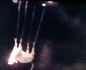 VIDEOS: Aliens Abducting Cattle / I Want To Believe ...