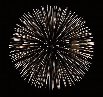 Celebration Animated Gifs Celebrate Fireworks Animation Animations