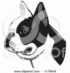 Clipart Illustration of a Labrador Retriever Dog's Face ...