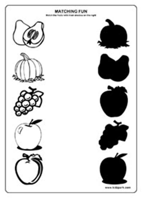 fruits worksheetsscience activity sheets  kidsfruits