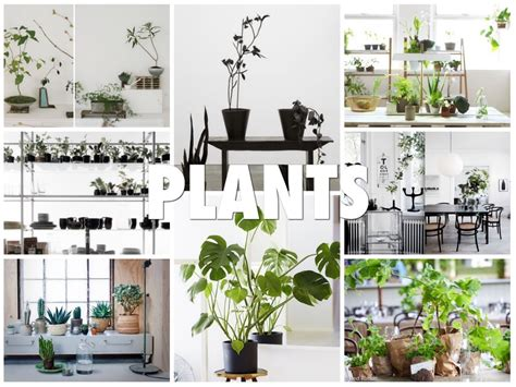 Scandinavian Interior Design Trends 2013 By Emma Fexeus