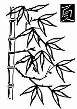 Bamboo Coloring Pages Popular Clip sketch template