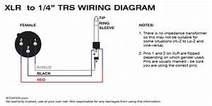 Xlr To Trs Wiring Diagram