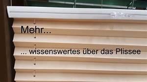 Dachfenster Plissee Ohne Bohren : mehr plissee ohne bohren ~ Eleganceandgraceweddings.com Haus und Dekorationen
