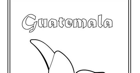 flor nacional de guatemala para colorear y pintar colorea el dibujos