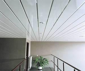 Faux Plafond Pvc : faux plafond pvc construire ma maison ~ Melissatoandfro.com Idées de Décoration