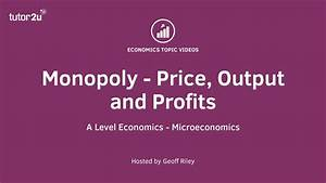 Monopoly Power In Markets - Applied Examples