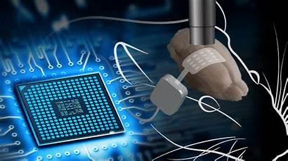 Brain Interface Loop Closed Engineering Optogenetic Bio