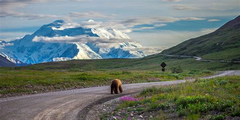 Find Urban and Outdoor Adventure in Anchorage and Denali ...