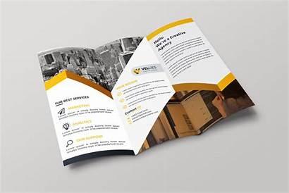 Tri Fold Brochure Professional Template Eps Brochures
