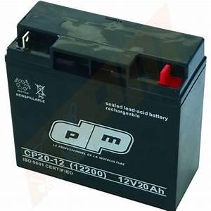 Batterie De Tracteur : batterie tracteur tondeuse autoport e nh1220 pour ggp castelgarden ~ Medecine-chirurgie-esthetiques.com Avis de Voitures