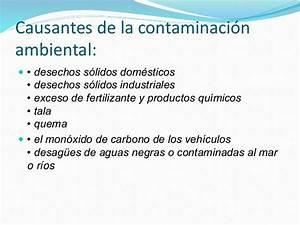 CONTAMINACIÓN AMBIENTAL, CAUSAS Y CONSECUENCIAS