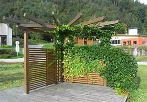 Garten Pergola Holz : pergola perfekter sichtschutz f r den garten penmie bee ~ A.2002-acura-tl-radio.info Haus und Dekorationen