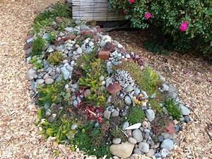 Welche Pflanzen Eignen Sich Für Einen Steingarten : steingarten pflanzen im topf garten design ideen um ihr ~ Michelbontemps.com Haus und Dekorationen