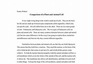 Comparison Of A Plant And Animal Cell