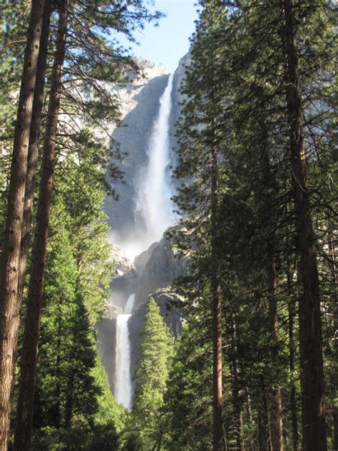 Day San Francisco Redwood Forest Yosemite Tour From