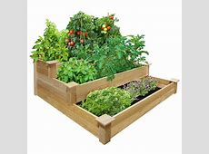 vegetables Any concerns on putting a garden bed over
