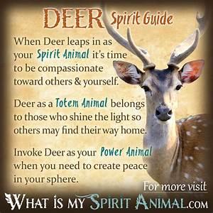 Image Gallery deer symbolism