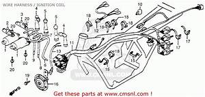 Honda Cb750c 750 Custom 1981  B  Usa Wire Harness