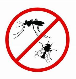 Mückenplage Im Haus : m cken m ssen drau en bleiben ~ Orissabook.com Haus und Dekorationen