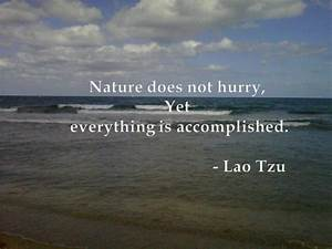 Quotes About Natural Beauty. QuotesGram