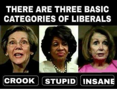 Meme Categories - there are three basic categories of liberals crook stupid insane meme on sizzle