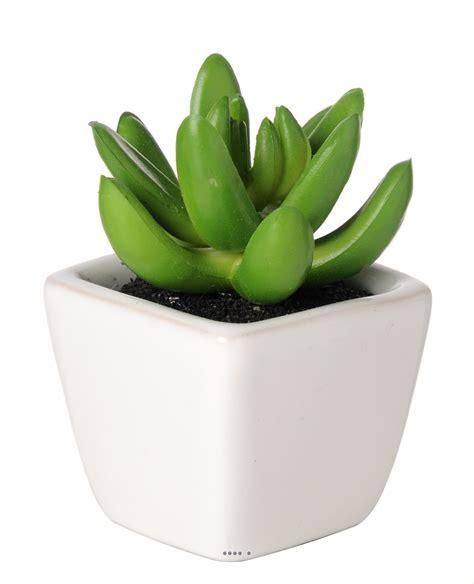 plante grasse artificielle succulente cact 233 e en pot c 233 ramique du site artificielles