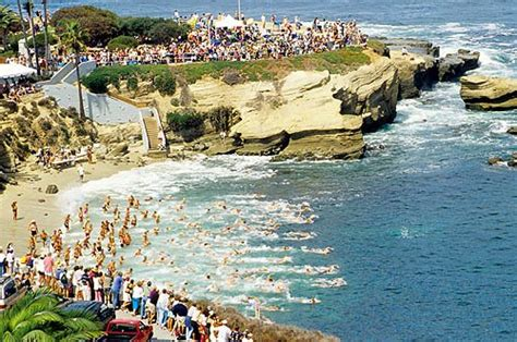 The La Jolla Rough Water Swim  La Jolla Travel