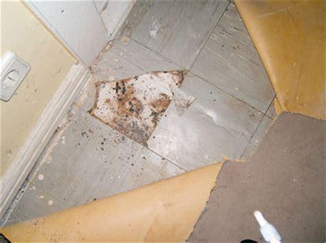 unterschied pvc linoleum asbest wider besseren wissens berliner mieterverein e v