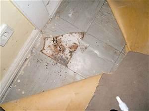 Vinyl Asbest Platten : asbest wider besseren wissens berliner mieterverein e v ~ A.2002-acura-tl-radio.info Haus und Dekorationen