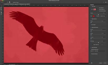 Select Photoshop Selections Quick Precise Selection Mask