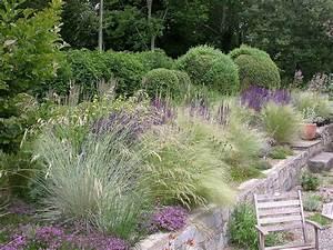 Welche Pflanzen Passen Zu Rosen : mixed perennial planting pinterest gr ser lavendel ~ Lizthompson.info Haus und Dekorationen