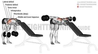 head supported bent over dumbbell lateral raise exercise