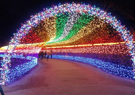 commercial christmas string lights outdoor wholesale led