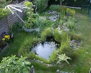 Gartenteich Mit Bachlauf : lebensraum gartenteich ~ Buech-reservation.com Haus und Dekorationen