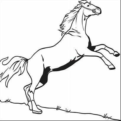 Horse Coloring Pages Printable Bucking Derby Hors