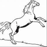 Horse Coloring Pages Printable Bucking Print Derby Colorings Horses Hors Kindergarten Getdrawings Getcolorings sketch template