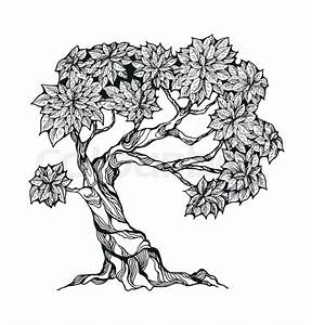Gnarled Tree With Leaves In A Stylized Style