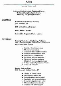 bsn resume sample top 10 resumes for registered nurse images nursingsample