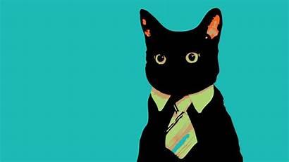 Meme Cat Tie Cats Animals Wallpapers Wallpaperup