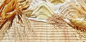 Weiße Fliege Bekämpfen Hausmittel : 16 maden in der k che bek mpfen bilder maden bekampfen so helfen hausmittel mehlmotten ~ Whattoseeinmadrid.com Haus und Dekorationen