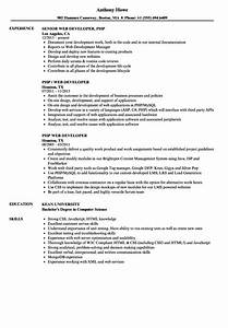 funky experienced php developer resume sample sketch With php sample resumes for experienced