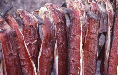 inuit tribe food food
