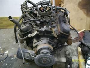 Chevy 4 3l Tbi V